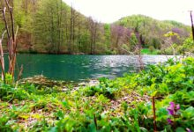 Kaltentalweiher bei Bad Urach