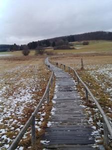Das Schopflocher Moor