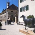 Gestüt Marbach Eingang