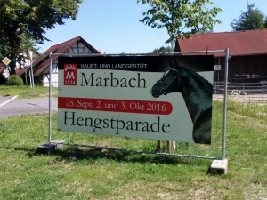 Marbacher Hengstparade