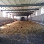 stall-innen-marbach