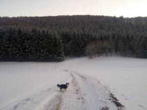 (Kurz-)Wanderung bei Lenningen und der Pfulb-Loipe